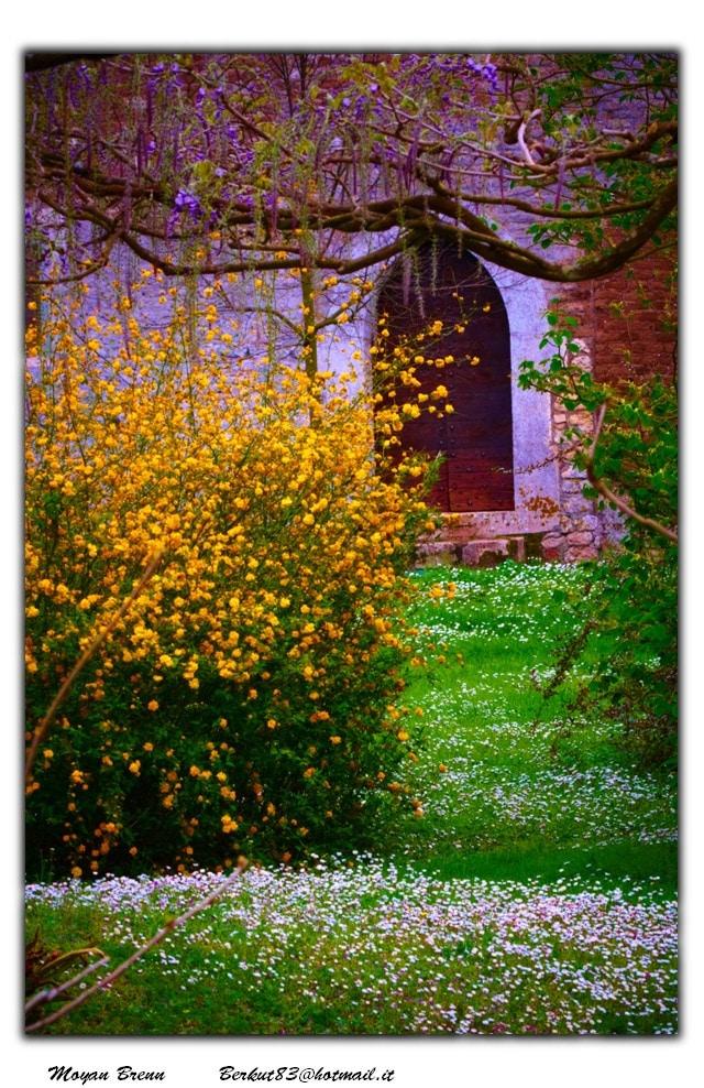 garden courtesy FlickrCC Moyan_Brenn