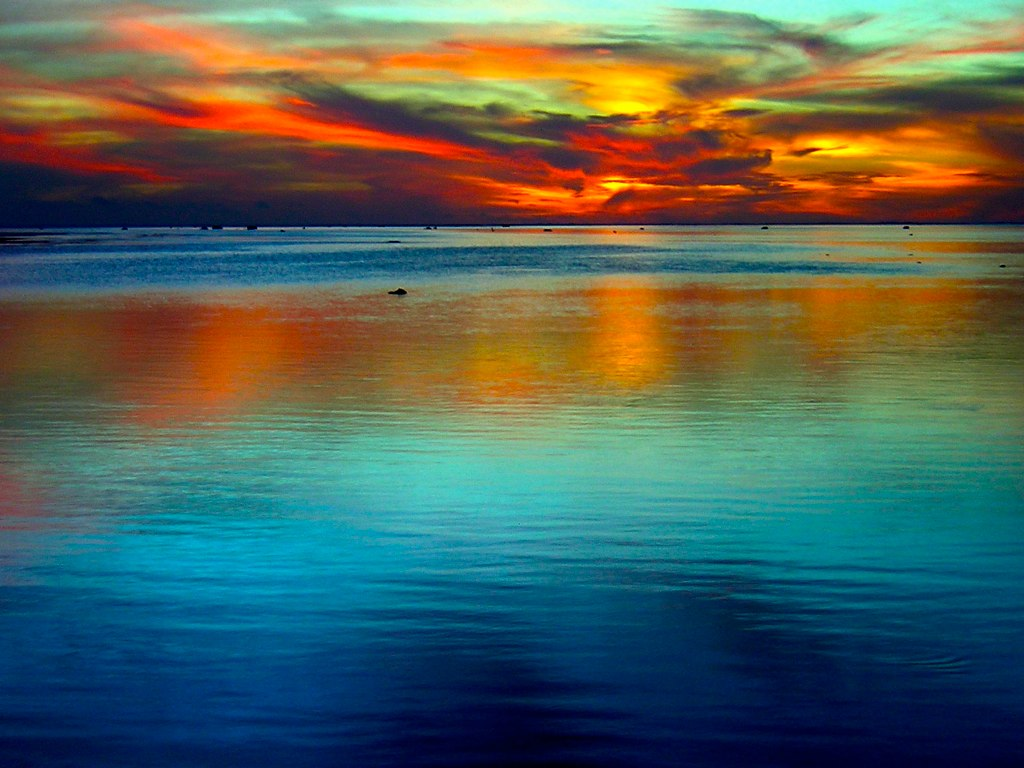 ocean and sky lindsey lewis libre living